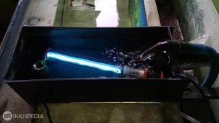 Fungsi Lampu UV Untuk Menjernihkan Air Aquarium