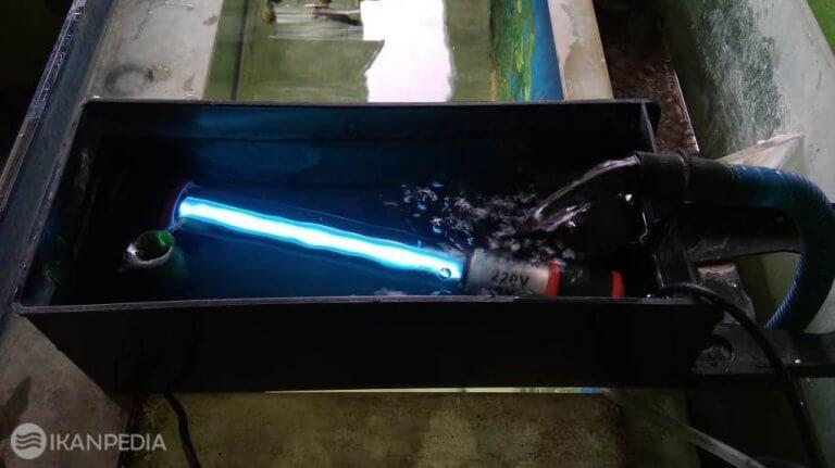 Lampu UV Aquarium